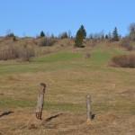 Jurgowskie polany